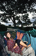 Young woman in treehouse hammock. Road Protest actions around the M65 extension. This involved protecting and squatting a group of houses, and also squatting treehouses in the forest at  Stanworth Valley Preston Lancashire. 1995<br /><br />The British Road Protesters movement began in the early 1990s when the Donga tribe squatted Twyford Down to save this beautiful site, a site of scientific interest SSI from the Ministry of transport's road building programme which threatened to destroy the landscape. The Dongas was the name of the ancient walkways, the paths trodden in the middle ages by people walking down to Winchester. A small tribe were joined by people of all walks of life who came to Twyford Down to defend it. A long hard battle over several years ended in the 'cutting' a new motorway built through this ancient monument and destroying it. <br /><br />The Road Protest movement in Britain continued for many years and more battles were fought in London against the MII both at Wanstead then in Leytonstone, and subsequently at Newbury, and in Sussex. the protesters were very inventive in their use of non violent peaceful direct action. They barricaded themselves into squats, made tree houses, tunnels and have huge demonstrations against the bailliffs, police and security who tried to force their way through the defences of this alternative environmental popular movement. Many of the roads were built eventually and many sites of great beauty lost, but the government had to stand down from its road building policy and eventually the programme was halted. the protests cost the government billions. Out of that movement grew many environmental NGOs who have to this day kept fighting for ecological and sustainable environmental solutions rather than following the cult of the car, petrol and roadbuilding..