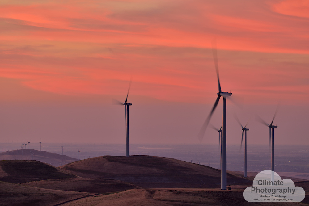 """Altamont Pass Wind Farm is one of the oldest and largest wind turbine facilities in America and the world.  Having gotten its start as a result of the policy incentives from the 1970's era energy crisis, this farm is now in a second phase, having been through the process of """"repowering"""" from old, smaller, more avian-destructive turbines, to larger, slower-turning, more powerful, and less avian-destructive turbines.  Some of the Altamont Pass Wind Farm's energy output is contracted through a power purchase agreement (PPA) with Google to power their Googleplex in Mountain View.<br /> <br /> Climate change emissions from fossil fuels in excess of the planet's ability to balance that carbon output with natural carbon consumption requires humanity to switch to renewable forms of power generation, such as wind turbines.  Wind turbines can be mortally dangerous to birds and bats, however.  The Altamont Pass Wind Farm has been challenged by environmental organizations for these impacts, so siting wind projects is critically important, as is improving wind turbine technology for these species."""