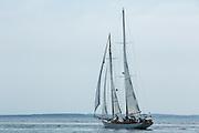 Camden, ME - 11 August 2014. The windjammer schooner Heron leaving Camden.
