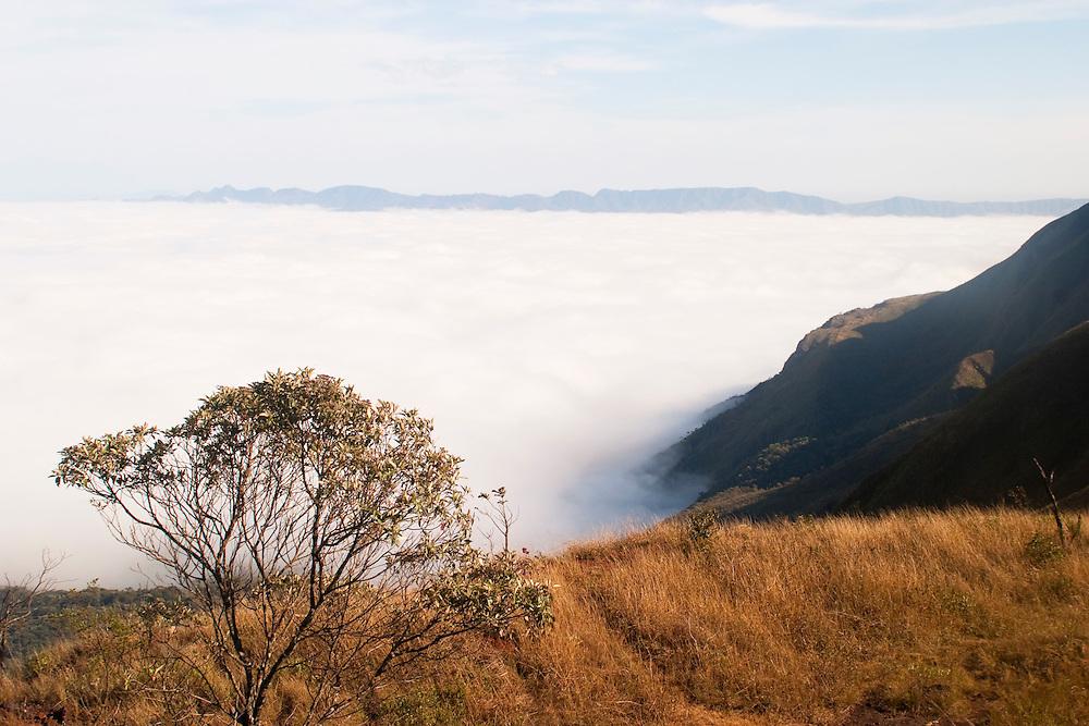 Belo Horizonte_MG, Brasil...Neblina no Topo do Mundo localizado na Serra da Moeda...The fog in the Topo do Mundo located in Serra da Moeda...FOTO: LEO DRUMOND /  NITRO