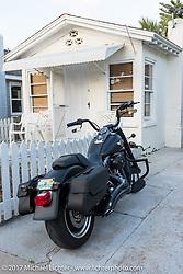 Wild Olive Street just off of Main Street during Daytona Beach Bike Week. FL. USA. Saturday March 11, 2017. Photography ©2017 Michael Lichter.