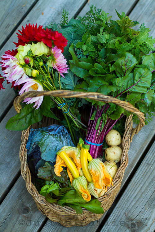 Basket of vegetables and flowers fresh from the garden.