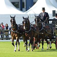 Driving - Dan Hughes - Additional Images - European Championships Aachen 2015