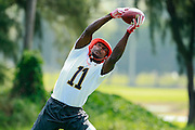January 28 2016: Atlanta Falcons wide receiver Julio Jones during the Pro Bowl practice at Turtle Bay Resort on North Shore Oahu, HI. (Photo by Aric Becker/Icon Sportswire)