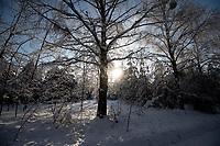 Podlasie, 06.02.2021. N/z zasniezona droga do wsi Stary Dwor nad Zalewem Siemianowka fot Michal Kosc / AGENCJA WSCHOD