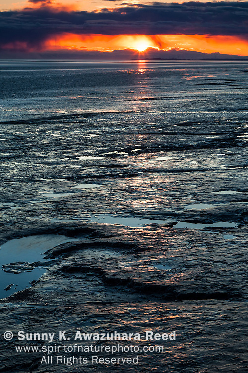 Sunset behind Kenai Mountains at the mud flat in Turnagain Arm of Cook Inlet, Southcentral Alaska, Spring.