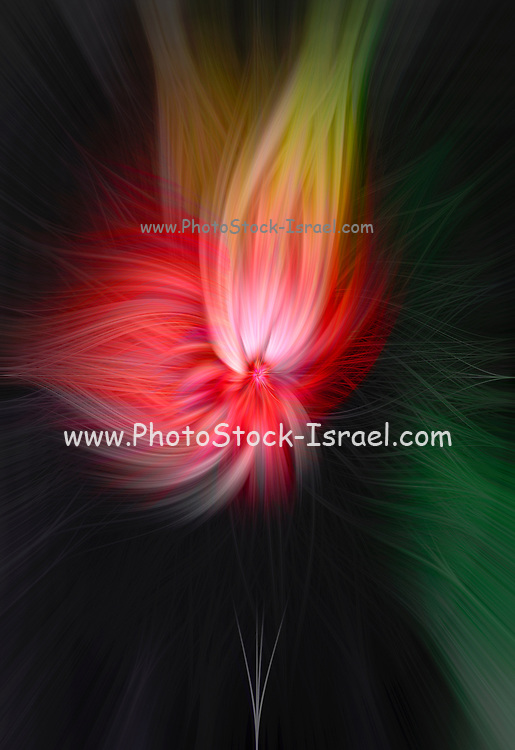 abstract of light and motion in yellow and red