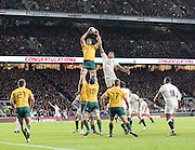 Twickenham, United Kingdom. Courtney LAWES, challenge's, Rob SINNONS at the line out, during the Old Mutual Wealth Series Rest Match: England vs Australia, at the RFU Stadium, Twickenham, England, <br /> <br /> Saturday  03/12/2016<br /> <br /> [Mandatory Credit; Peter Spurrier/Intersport-images]