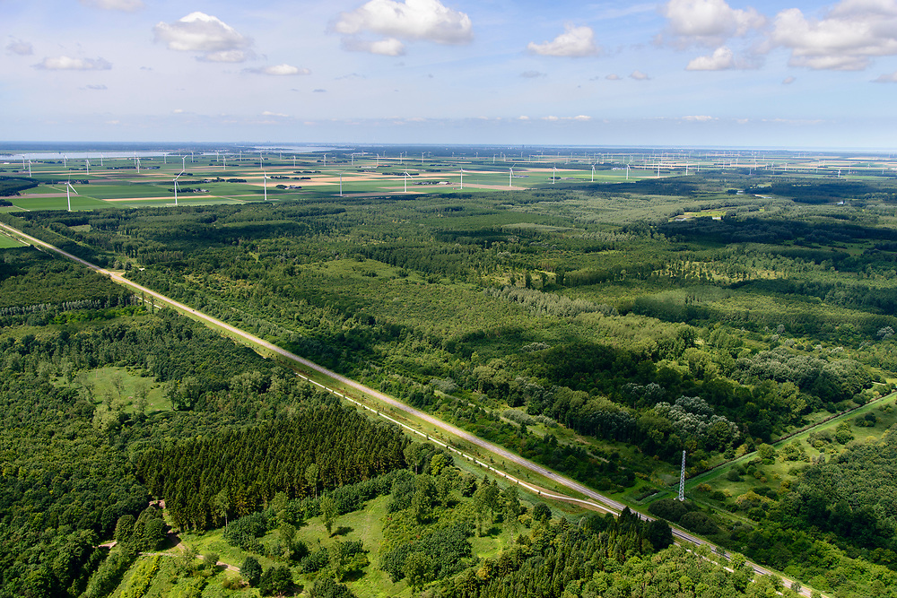 Nederland, Flevoland, Zeewolde, 17-07-2017; Horsterwold, aangelegd bos, deels productiebos.<br /> Hoster woods, planted and constructed wood, partly production forest.<br /> luchtfoto (toeslag op standard tarieven);<br /> aerial photo (additional fee required);<br /> copyright foto/photo Siebe Swart