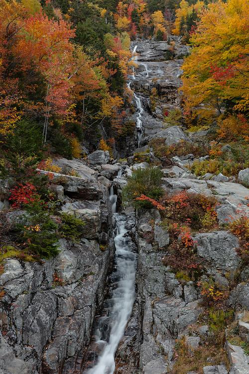 Autumn foliage at Silver Falls in the alpine terrain of the White Mountains.