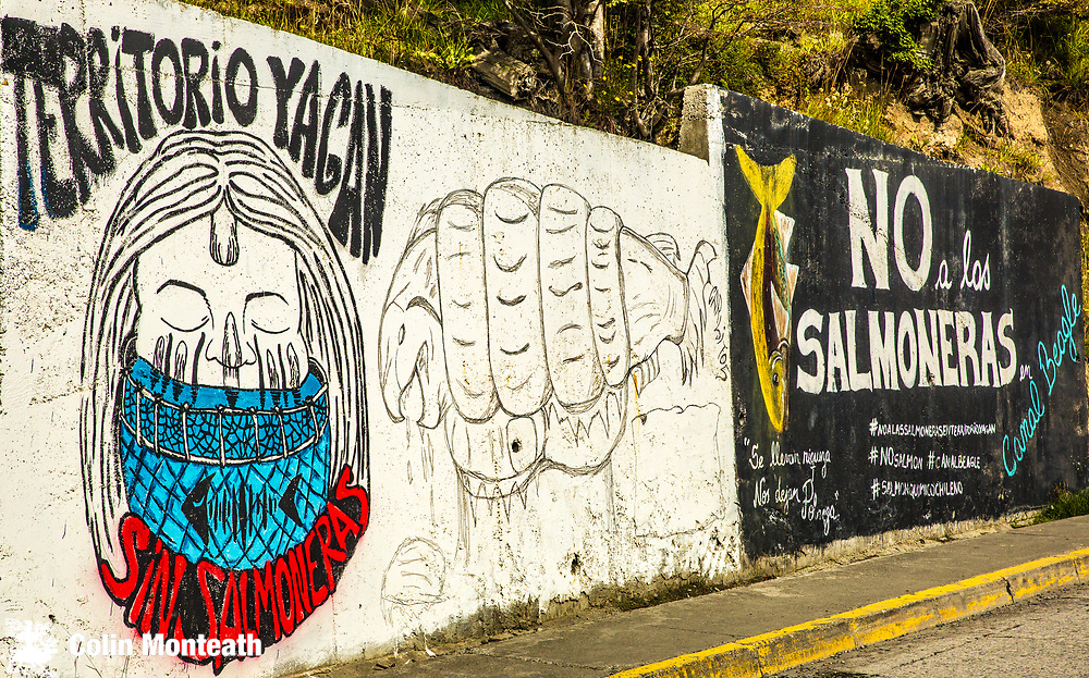 Protest murals against commercial salmon farms in Beagle Channel, Isla Navarino, Puerto Williams, Tierra del Fuego, Chile.