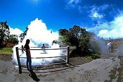 Steam Vents, off Crater Rim Drive, Hawaii Volcanoes National Park, Kilauea, Big Island, Hawaii
