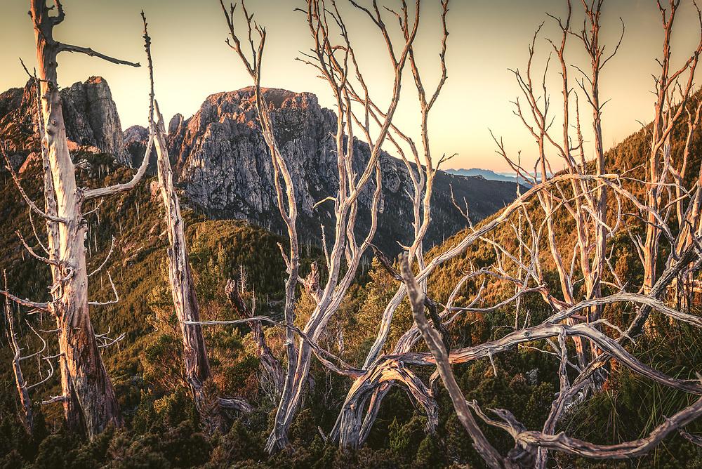 Sunrise over Sharlands and Philps peaks in  Franklin-Gordon Wild Rivers National Park, Tasmania