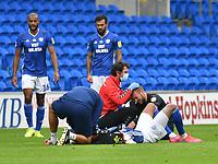 Football - 2019 / 2020 Championship - Cardiff City vs Charlton Athletic<br /> <br /> Robert Glatzel of Cardiff City & Sam Field of Charlton receive treatment , at the Cardiff City Stadium.<br /> <br /> COLORSPORT/WINSTON BYNORTH