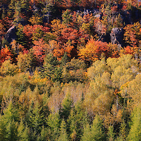 """""""Autumn Color on Cliff Drive"""" <br /> <br /> Beautiful fall color all along Cliff Drive as I headed up Keweenaw Peninsula of Michigan! This beautiful area in Michigan's Upper Peninsula is amazing year round with it's rock cliffs and trees, but is particularly stunning in autumn!"""