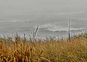 Fog and stormy day in Rhode Island.