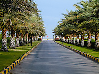 Oman. Suwadi al Batha in the Al Batinah region is located on the coast of the Gulf of Oman, and is a popular diving spot. Date Palms.