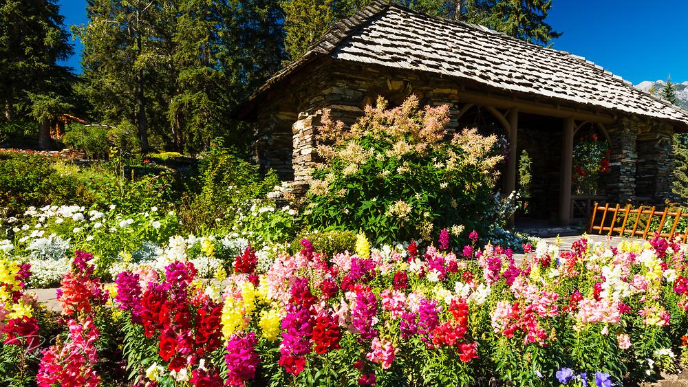 Flowers and gazebo at Cascade Gardens, Banff National Park, Alberta, Canada