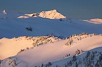 Winter dawn splashes golden light on slopes in the Mount Baker Wilderness, Washington