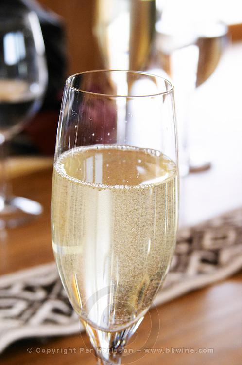 Glass flute of sparkling Cruzdiabolo semi-sweet wine Bodega Del Anelo Winery, also called Finca Roja, Anelo Region, Neuquen, Patagonia, Argentina, South America