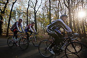 Een groep wielrenners genieten in het bos bij Zeist van het mooie herfstweer.<br /> <br /> Cyclists enjoy the beautiful autumn weather in the woods near Zeist.