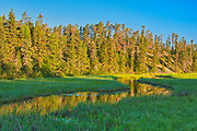 Morning light on Log Creek<br />Near Nestor Falls<br />Ontario<br />Canada