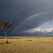 Rainbows over Masai Mara National Reserve after rains in early March. Kenya, Africa
