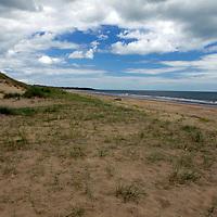 Europe, Ireland, Brittas Bay. Brittas Bay Dunes.