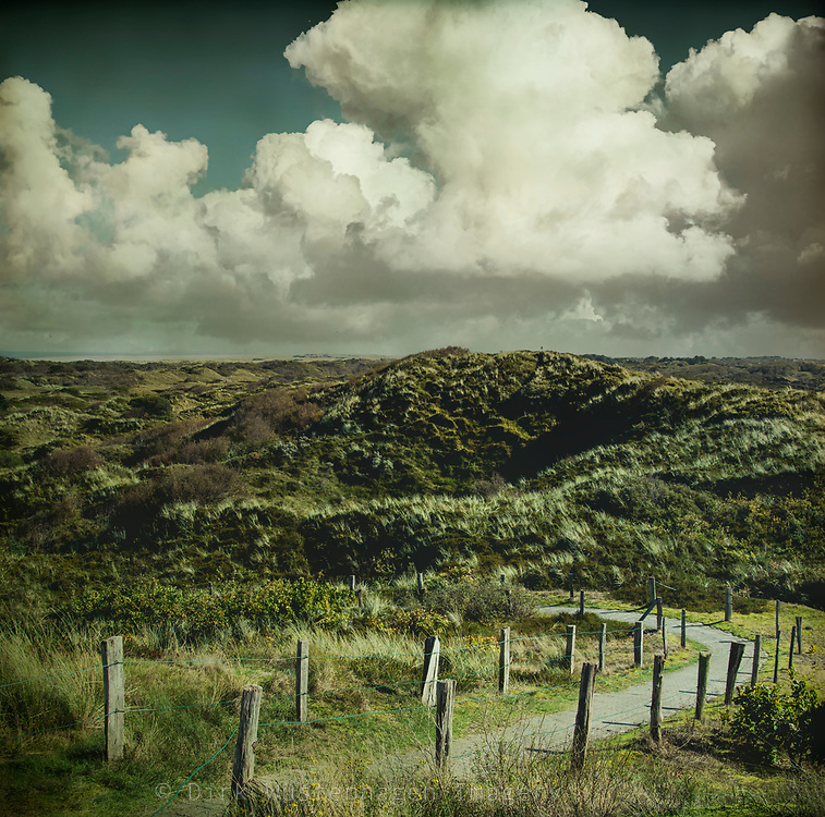 Hike through the protected dunes on the island Spiekeroog, Germany - textured photograph