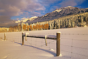 winter with fence and farmland at edge of Canadian Rocky Mountains<br /> <br /> Edgewater<br /> British Columbia<br /> Canada