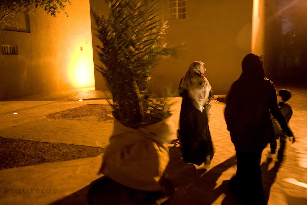 Dubai, United Arab Emirates (UAE). January 29th 2009..Bastikia.
