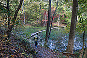 Enjoy walking a 2.3-mile loop (and other trails) around the old city reservoir which provided water 1917-1944 and now serves as lake habitat, in Bays Mountain Park & Planetarium, an attractive nature preserve in Kingsport, Tennessee, USA. Bays Mountain Park is the largest city-owned park in Tennessee and was declared a State Natural Area in 1973. As part of the Ridge-and-Valley Appalachians, the ridge of Bays Mountain runs southwest to northeast, from just south of Knoxville to Kingsport, in eastern Tennessee.