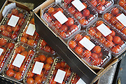 """Cherry tomatoes. Getting donations of unsold food that would most likely be discarded, from the Paris Rungis vegetable market<br /><br />The Freegan Pony is an alternative restaurant housed in a squat. It was founded in 2015 by Aladdin Charni with three other collaborators. The restaurant specialises in cheap vegetarian cuisine, serving meals which guests reserve a place through a Facebook group, paying €2 a meal. The restaurant meals contain unsold and donated food, collected from wholesellers at the Paris Rungis vegetable market. The Freegan Pony is located at the Porte de la Vilette on the outskirts of Paris, at the entrance to the peripherique outer circle motorway.<br /><br />Freegans are people who employ alternative strategies for living based on limited participation in the conventional economy and minimal consumption of resources. Freeganism is the practice of reclaiming and eating food that has been discarded. People who attempt to live an ethical lifestyle by reusing trash and rubbish thrown away by others.<br /><br />Freeganism is an ill-defined activity and is a subset of the larger anti-capitalist and environmental protest movements. It embraces alternative, anti-consumerist lifestyles. Freegan practices also include co-operative living, squatting and """"freecyling"""", or matching things that people want to get rid of with things other people need"""