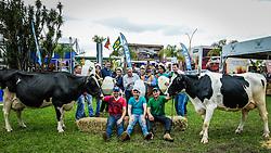 Banho de leite celebra os vencedores do concurso leiteiro  da raça holandesa na 39ª Expointer, Exposição Internacional de Animais, Máquinas, Implementos e Produtos Agropecuários. A maior feira a céu aberto da América Latina,  promovida pela Secretaria de Agricultura e Pecuária do Governo do Rio Grande do Sul, ocorre no Parque de Exposições Assis Brasil, entre 27 de agosto e 04 de setembro de 2016 e reúne as últimas novidades da tecnologia agropecuária e agroindustrial. FOTO: Itamar Aguiar/ Agência Preview