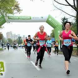 20141026: SLO, Athletics - 19th Ljubljana Marathon 2014 / Pri Zavarovalnici Tilia -10 km - 1.skupina