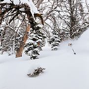 Tanner Flanagan finds the deepest snow of the season during a 4 foot winter storm.