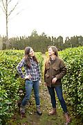 Kacie Merkel and Elizabeth Miller of Minto Island Tea Co