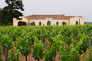 The newly renovated Chateau Petrus seen across its vineyards planted with Merlot vines Pomerol Bordeaux Gironde Aquitaine France