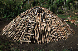 Pile of wood for making charcoal waiting to be lit in the countryside in Pinar Province; Cuba,