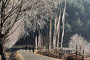 Buddhist prayer flags flutter over pedestrians crossing the Bumthang Chhu (river) on a frosty late winter morning in Jakar in Bumthang District, eastern central Bhutan. From coverage of revisit to Material World Project family in Bhutan, 2001.