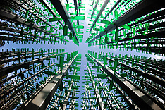 China: Beer forest made by 30,000 beer bottles - 31 July 2017