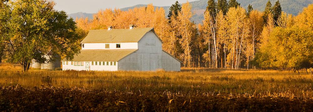 Barn in Fall near Stevensville, Montana.