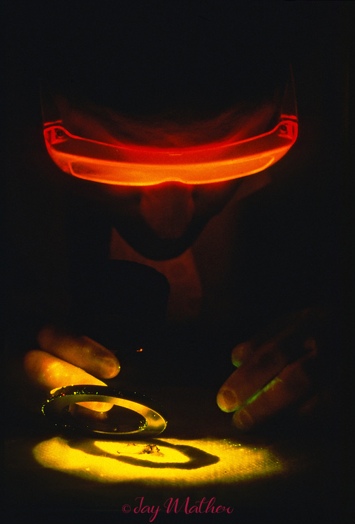 A scientist with the California State Crime Laboratory in Sacramento uses special lighting to analyze human tissue samples taken from a crime scene.