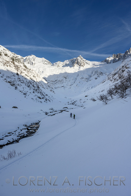 View to Bärenhorn on a ski tour from the Meiental on mount Zwächten with a descent to the Erstfeld valley, Uri, Switzerland<br /> <br /> Skitour vom Meiental auf den Zwächten mit Abfahrt ins Erstfelder Tal, Chlialp, Uri, Schweiz