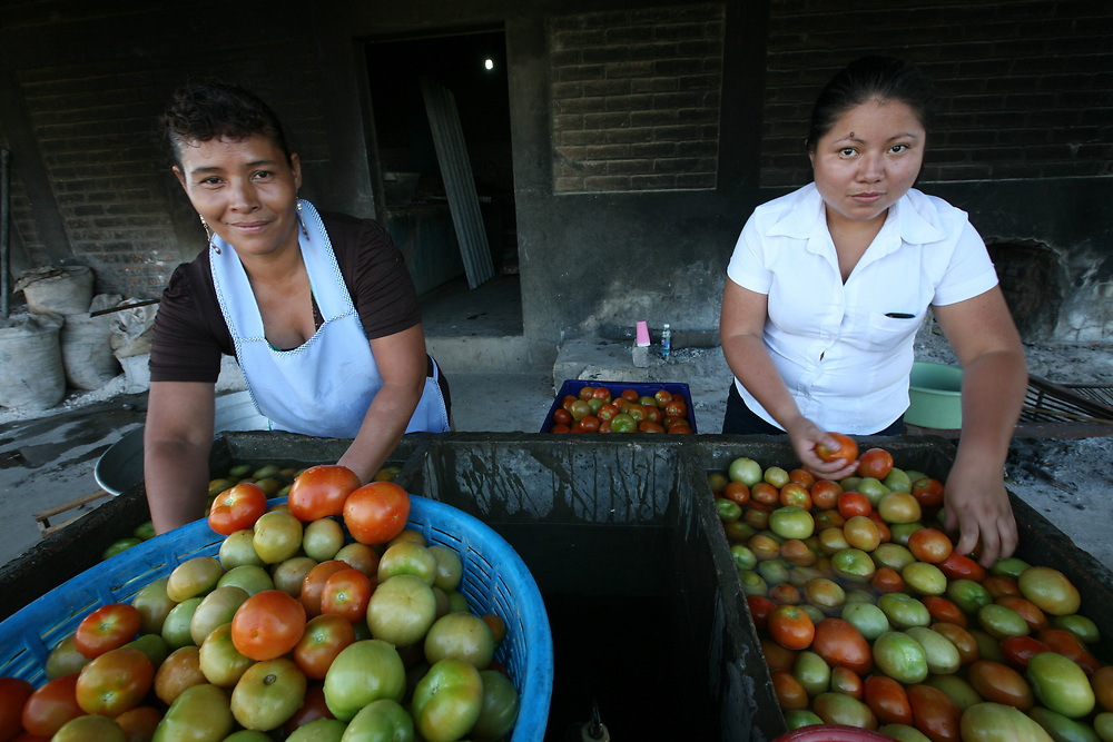 Carmen Elena Hernández viuda de Ramos and Silvia de Toledo wash tomatoes at the Los Pinos coop. As well as producing coffee the coop has diversified and produces vegetables for the local market as well as for members themselves. Cooperativa Los Pinos is a certified Fairtrade producer based in El Salvador.