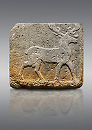Picture & image of Hittite monumental relief sculpted orthostat stone panel from Water Gate Basalt, Karkamıs, (Kargamıs), Carchemish (Karkemish). 900-700 BC . Stag. Anatolian Civilisations Museum, Ankara, Turkey. With his large and many branched antler, he walks towards the right. <br /> <br /> On a gray background. .<br />  <br /> If you prefer to buy from our ALAMY STOCK LIBRARY page at https://www.alamy.com/portfolio/paul-williams-funkystock/hittite-art-antiquities.html  - Type  Karkamıs in LOWER SEARCH WITHIN GALLERY box. Refine search by adding background colour, place, museum etc.<br /> <br /> Visit our HITTITE PHOTO COLLECTIONS for more photos to download or buy as wall art prints https://funkystock.photoshelter.com/gallery-collection/The-Hittites-Art-Artefacts-Antiquities-Historic-Sites-Pictures-Images-of/C0000NUBSMhSc3Oo