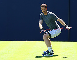 June 18, 2018 - London, England, United Kingdom - Andy Murray (GBR) practicing before his first game against Nick Kyrgios (AUS).during Fever-Tree Championship at The Queen's Club, London, on 18 June 2018  (Credit Image: © Kieran Galvin/NurPhoto via ZUMA Press)
