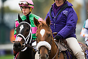 November 1-3, 2018: Breeders' Cup Horse Racing World Championships. Jockey  Irad Ortiz Jr. and Sippican Harbor in the Juveniles Fillies dirt G1