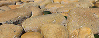 seaside textures
