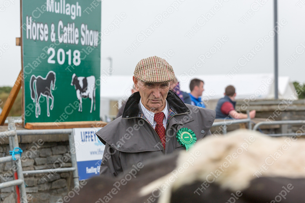 Sam Milligan judging the cattle during the Mullagh Horse & Cattle Show 2018